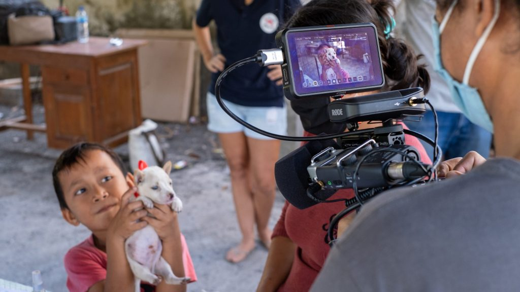 Australian NGO Four Paws video campaigns in Bali
